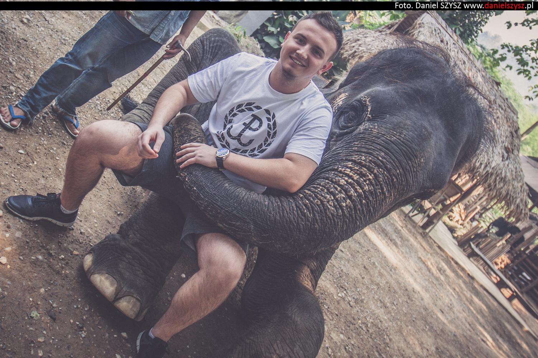 tajlandia-chiang-mai-karmienie-sloni-3