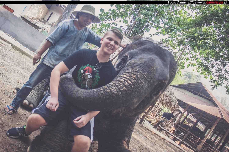 tajlandia-chiang-mai-karmienie-sloni-31