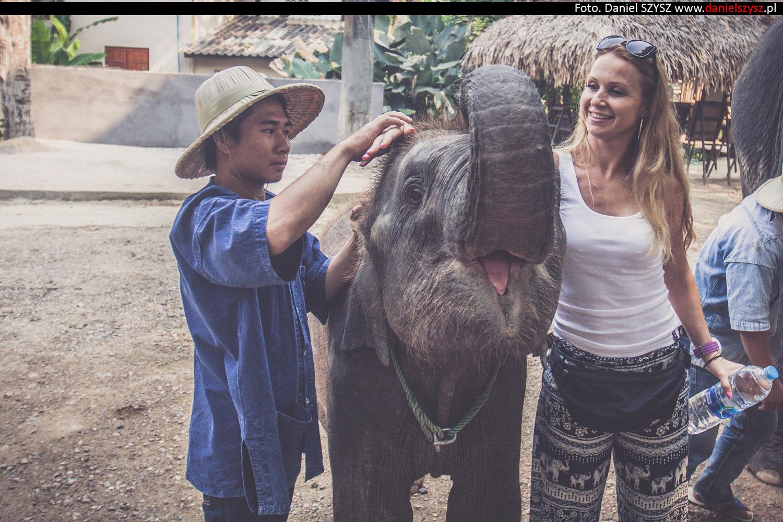 tajlandia-chiang-mai-karmienie-sloni-34