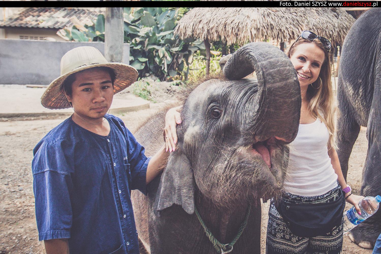 tajlandia-chiang-mai-karmienie-sloni-36