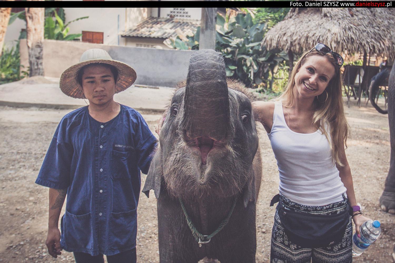 tajlandia-chiang-mai-karmienie-sloni-41