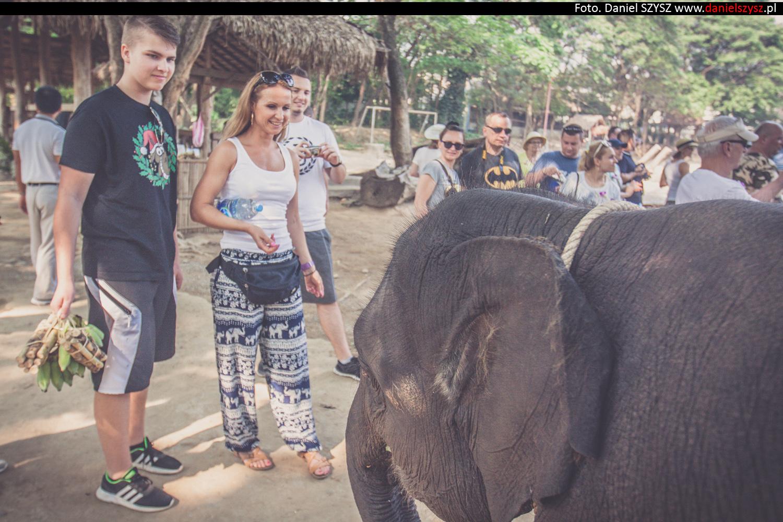 tajlandia-chiang-mai-karmienie-sloni-57