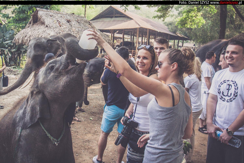 tajlandia-chiang-mai-karmienie-sloni-78