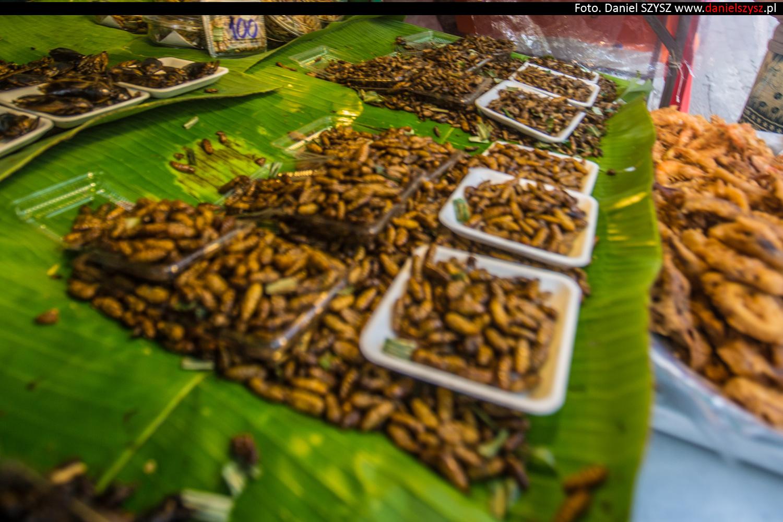 tajlandia-jedzenie-robaki2