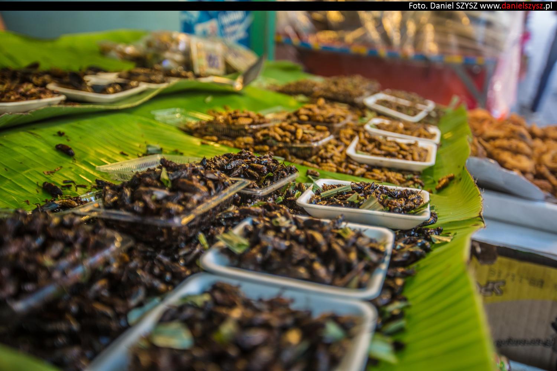 tajlandia-jedzenie-robaki3