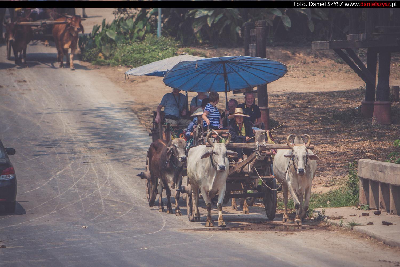 tajlandia-woly63