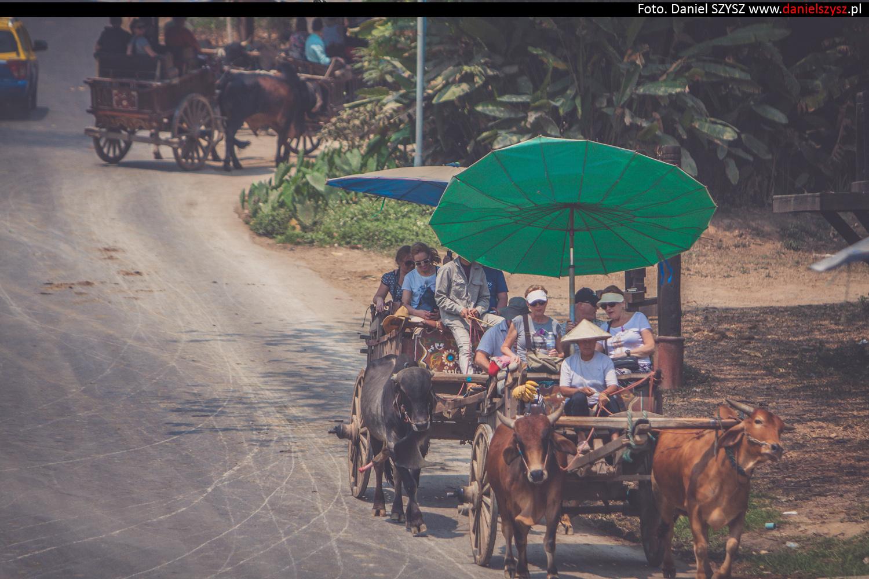 tajlandia-woly65