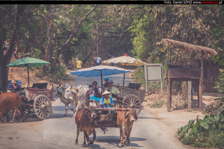 tajlandia-woly70