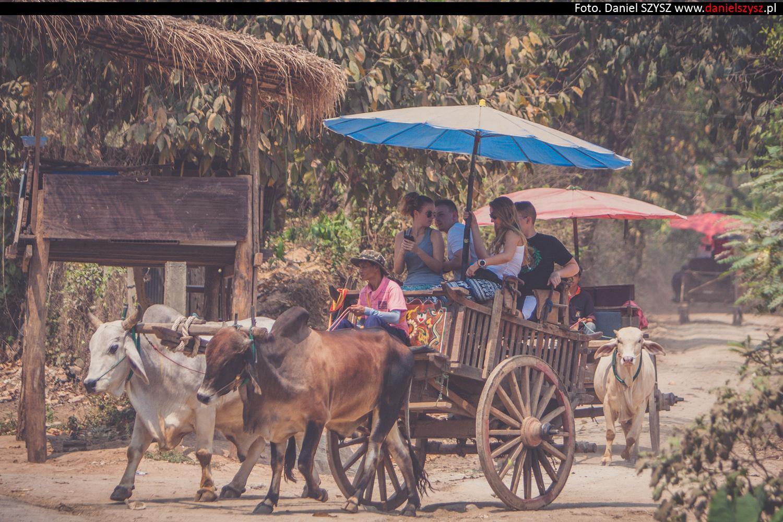 tajlandia-woly72