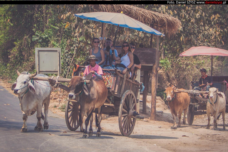 tajlandia-woly75