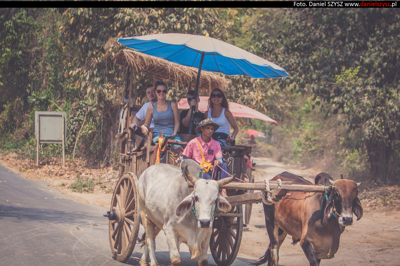 tajlandia-woly82