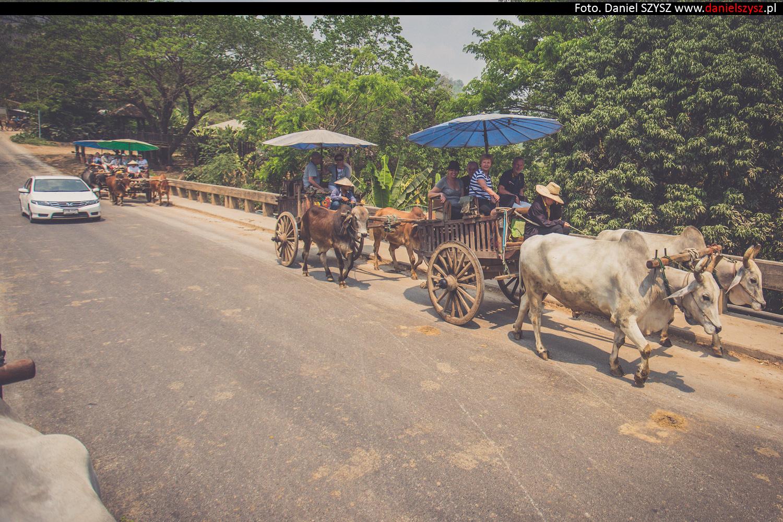 tajlandia-woly958