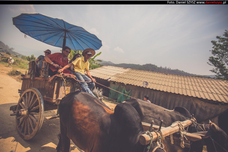 tajlandia-woly969