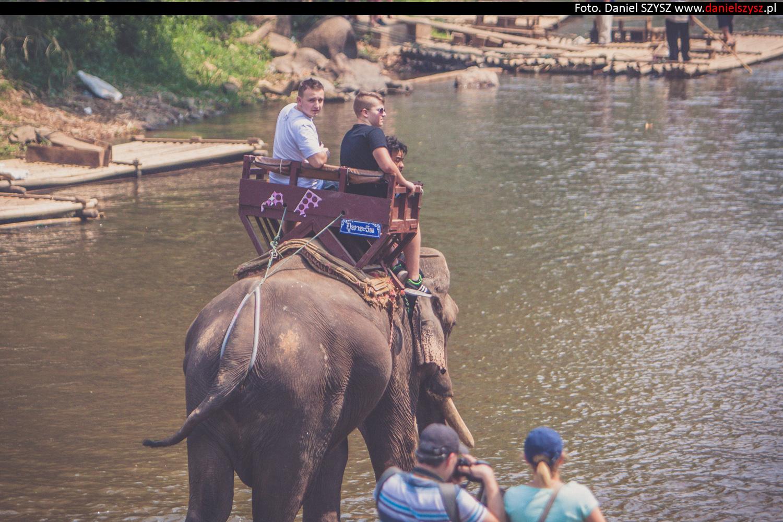 przejazdzka-na-sloniu-tajlandia-406