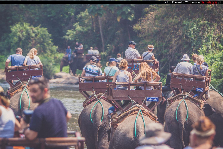 przejazdzka-na-sloniu-tajlandia-416