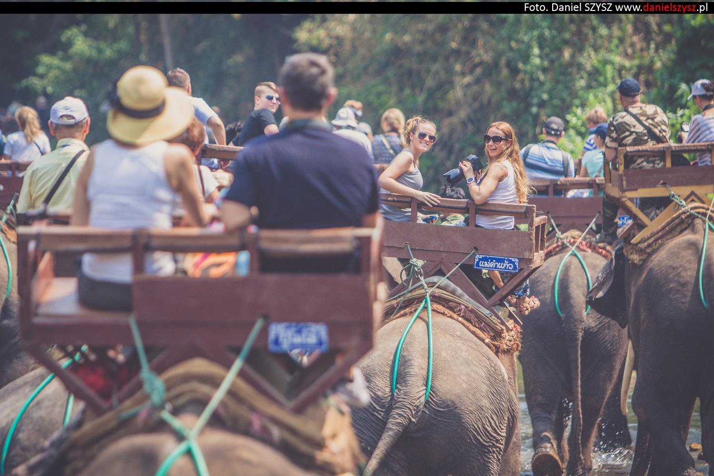 przejazdzka-na-sloniu-tajlandia-420