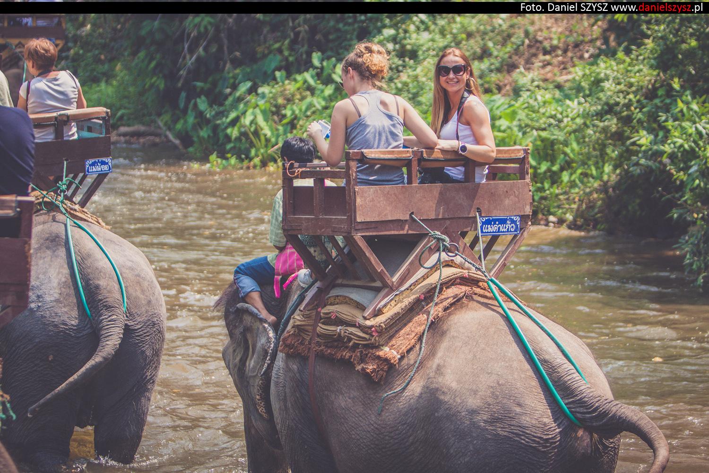 przejazdzka-na-sloniu-tajlandia-441
