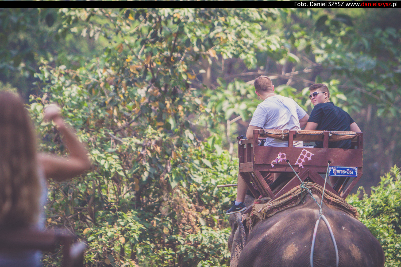 przejazdzka-na-sloniu-tajlandia-452