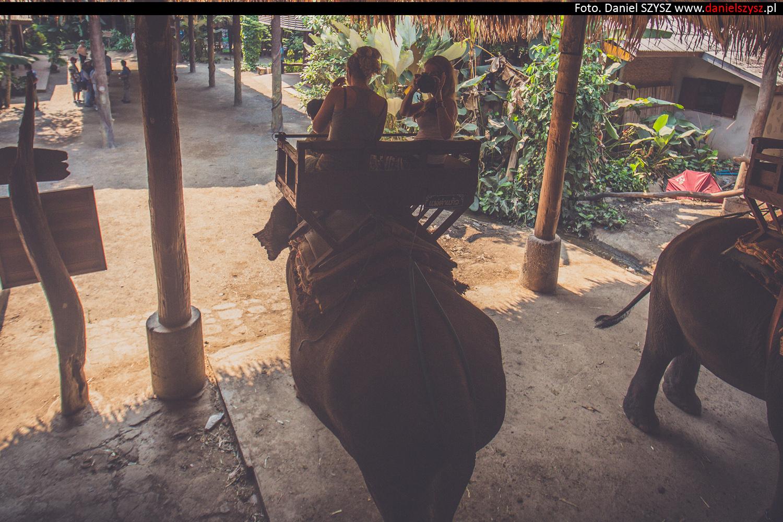 przejazdzka-na-sloniu-tajlandia-860