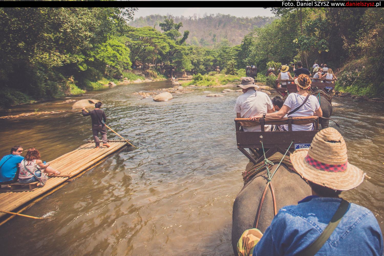 przejazdzka-na-sloniu-tajlandia-883