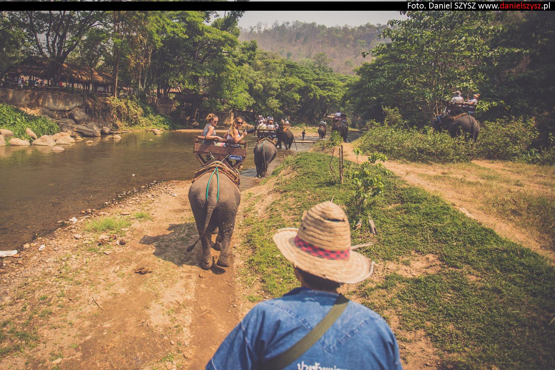 przejazdzka-na-sloniu-tajlandia-889