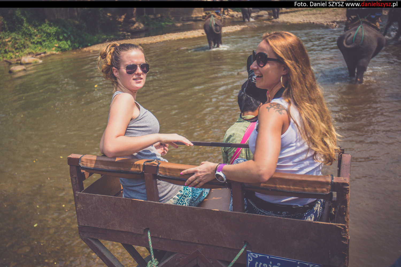 przejazdzka-na-sloniu-tajlandia-894