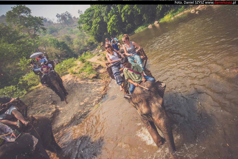 przejazdzka-na-sloniu-tajlandia-913