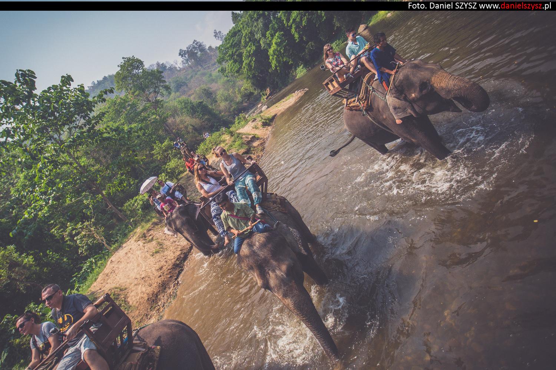 przejazdzka-na-sloniu-tajlandia-916