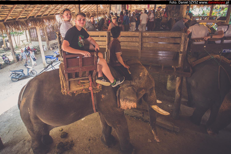 przejazdzka-na-sloniu-tajlandia-929