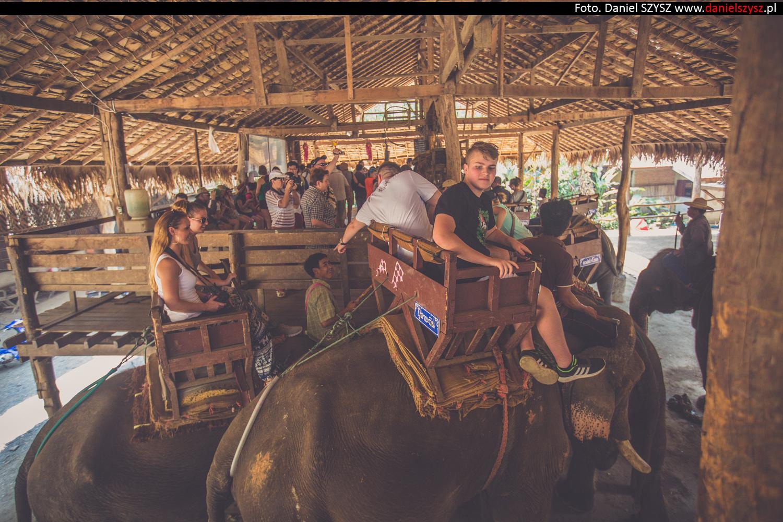 przejazdzka-na-sloniu-tajlandia-933